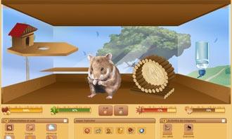 HamsterStory - Votre nouveau rongeur